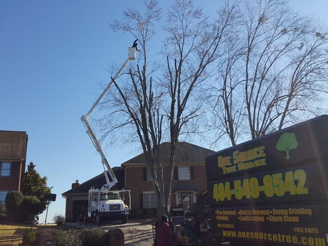 About One Source Tree Service